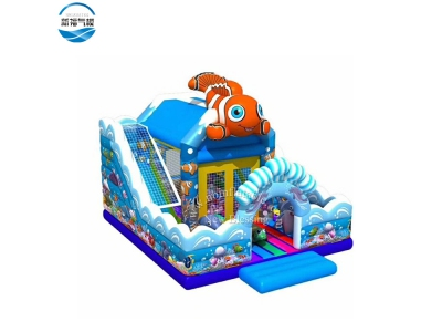 NBFC-38 Inflatable popular customized fish theme funcity
