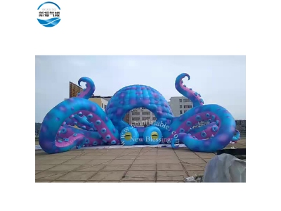 NBCA-08 Giant inflatable customized size painted octopus